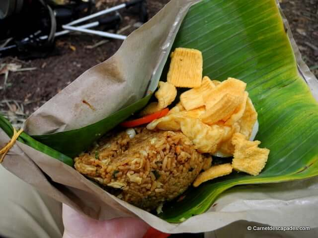 nasi-goreng-jungle