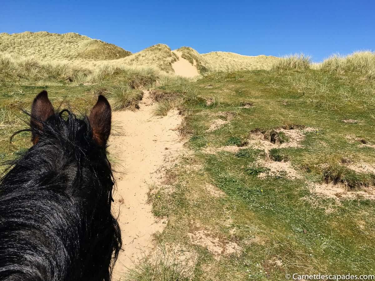 cheval-balade-dunes-plages