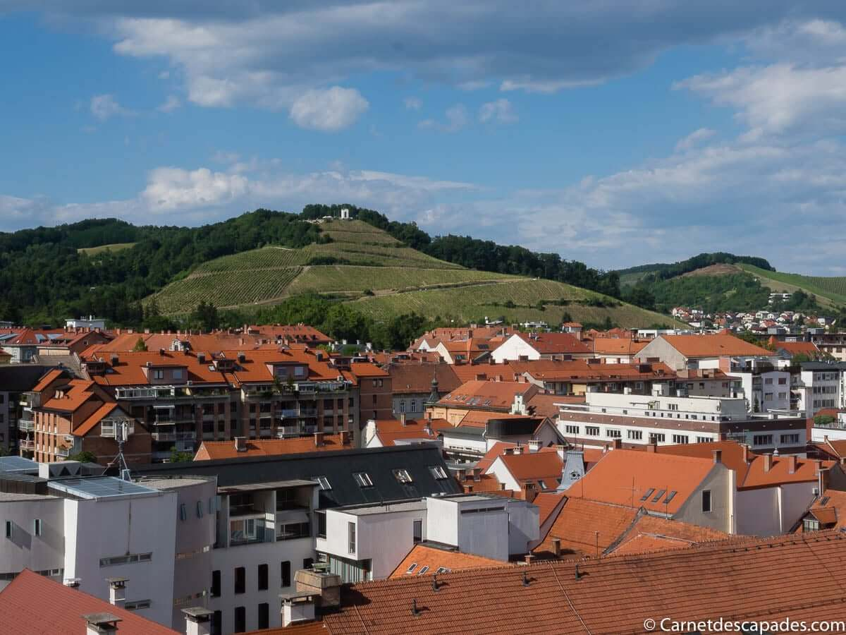 vue-clocher-cathedrale-maribor