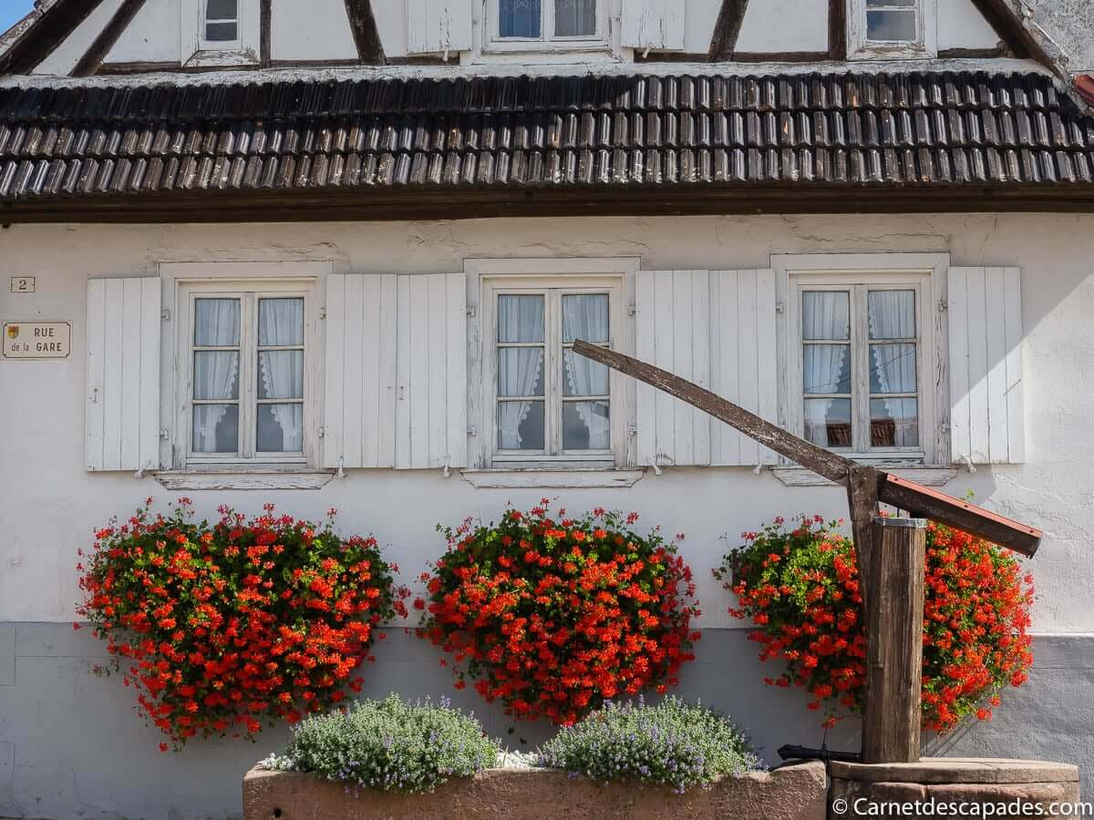 hunspach-nord-alsace
