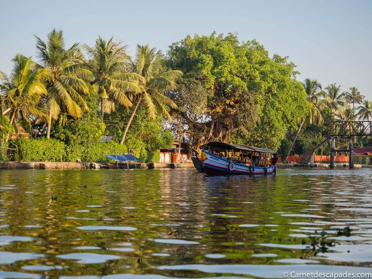 bateau-backwaters-alappuzha