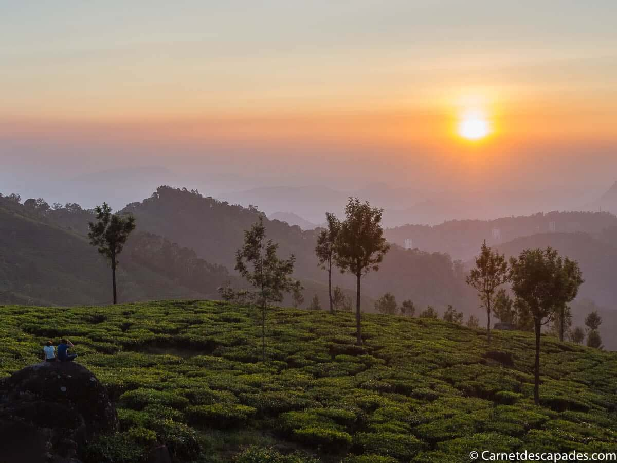 coucher-soleil-plantations-the-munnar