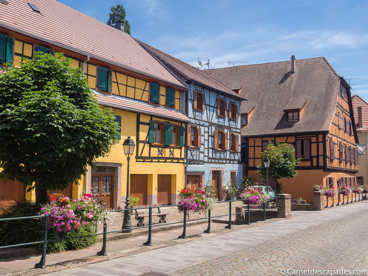 alsace-ribeauville-route-vins