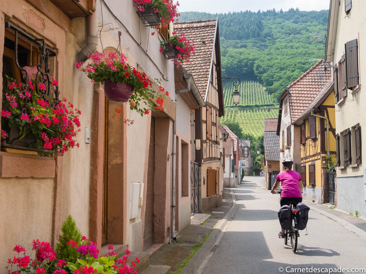 chatenois-velo-alsace