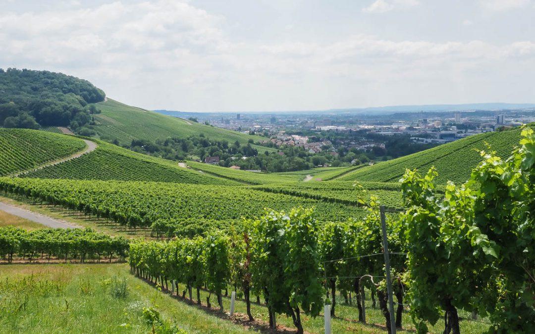 Heilbronn – Visite de la capitale des Vins du Wurtemberg