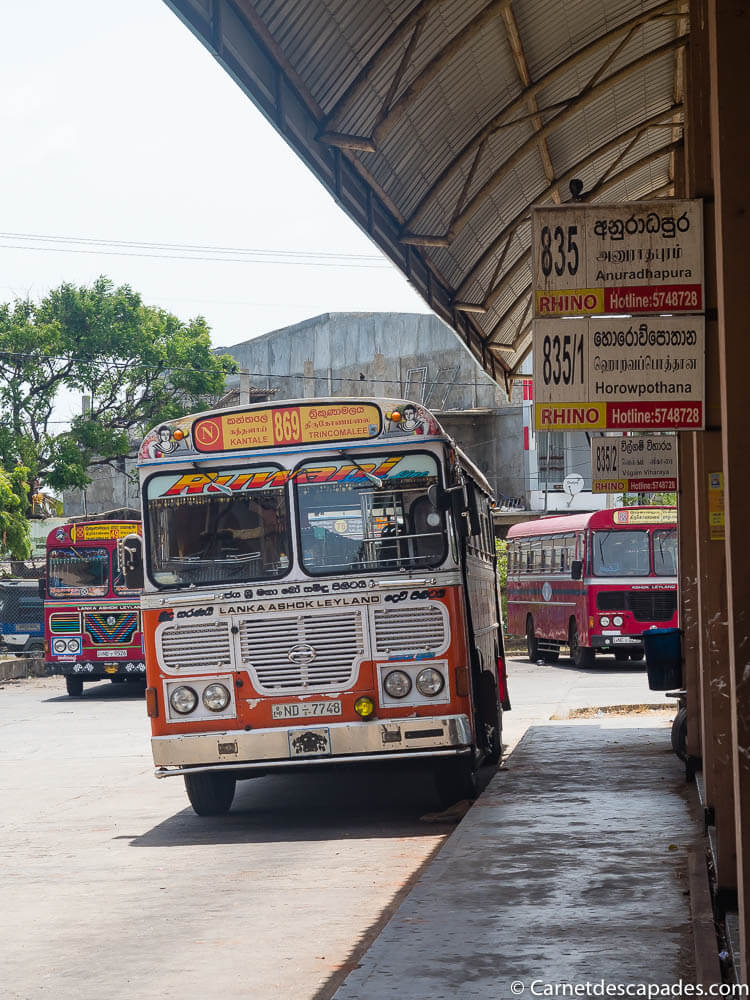 bus-sri-lanka