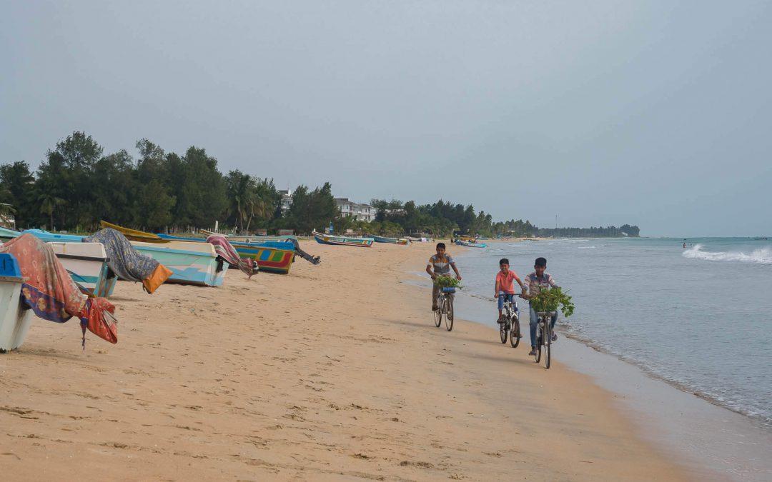Trincomalee et Batticaloa – Visite de la côte est du Sri Lanka