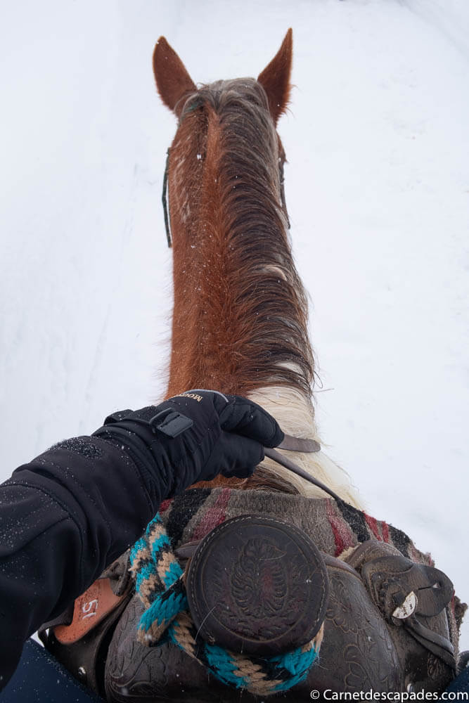equitation-western-hiver