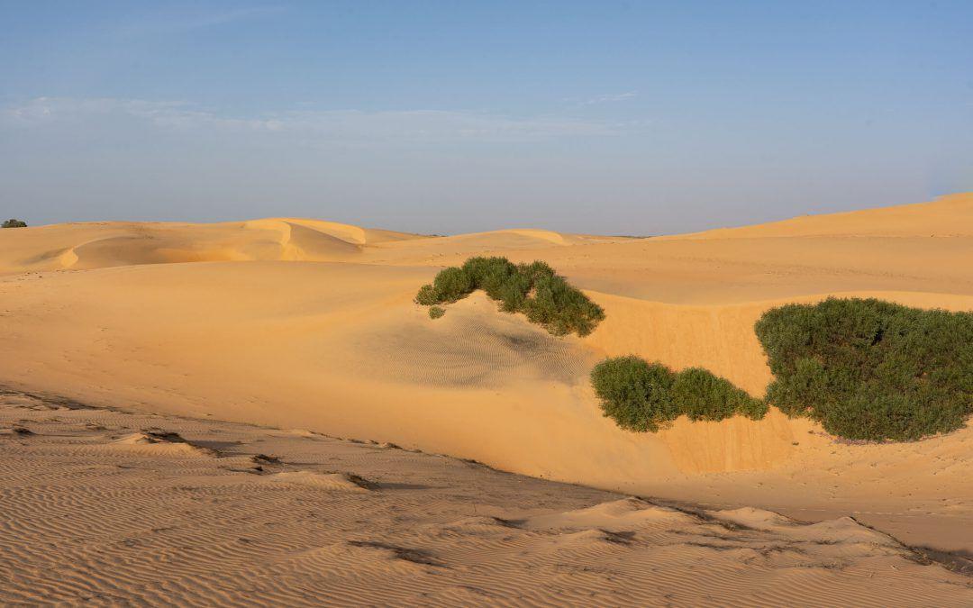 Désert de Lompoul – Le mini désert du Sénégal
