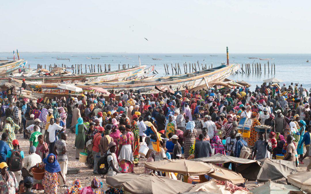 Mbour, Kayar et Djiffer – Incroyables retours de pêche au Sénégal