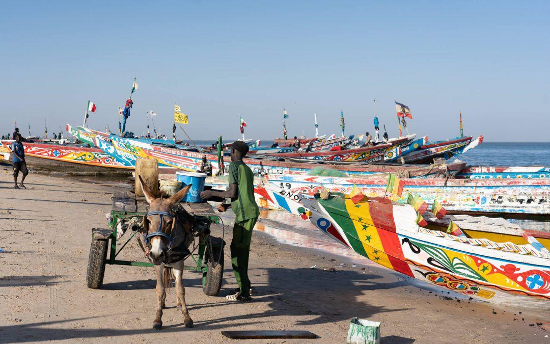 Voyage au Sénégal – Itinéraire de 10 jours et impressions