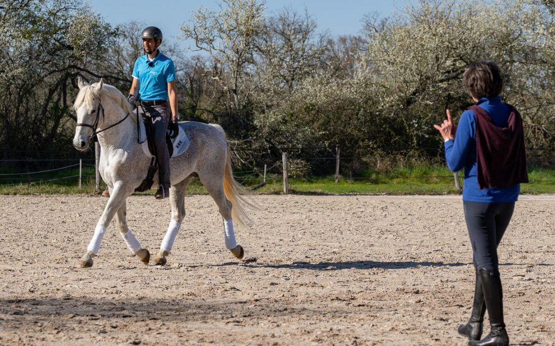 Méthode Alexander en équitation – Mes 12 apprentissages