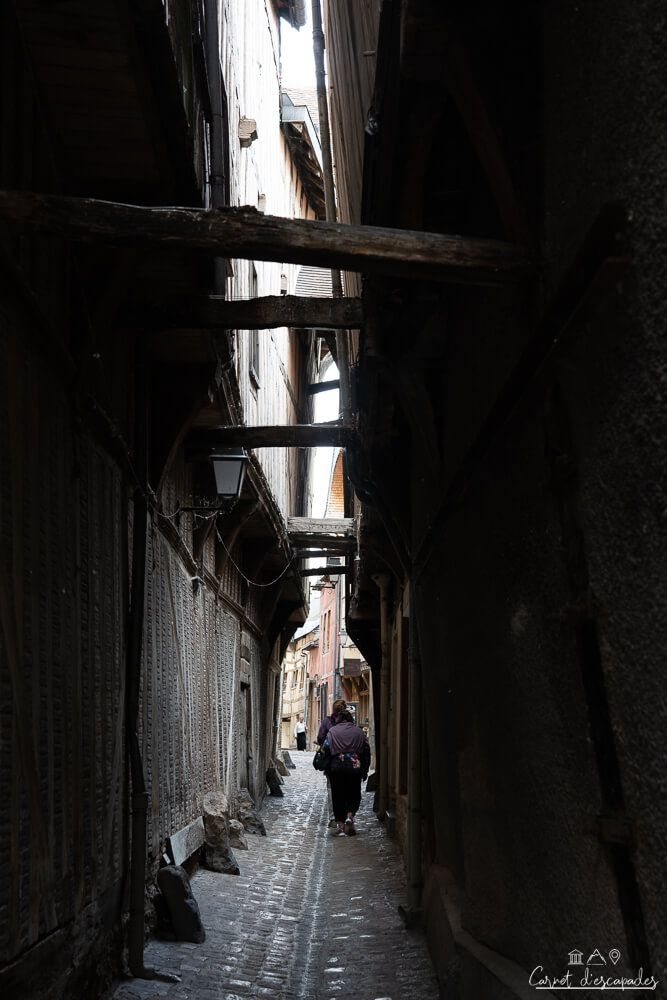 ruelle-chats-troyes