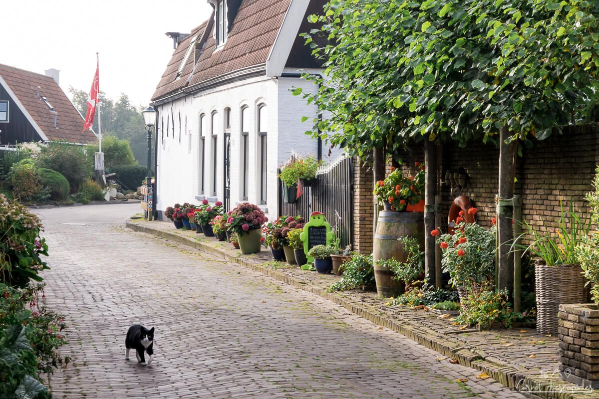 chat-village-texel