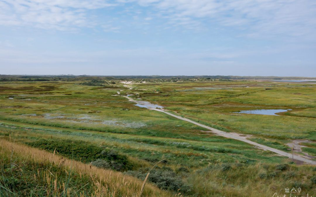 Visite de Texel, la plus grande île de la Mer des Wadden
